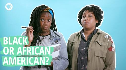 Say It Loud : Are You ``Black`` or ``African American?``