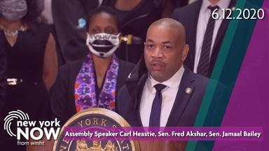 Police Reform Package Comes to Albany