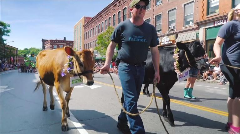 Vermont PBS Specials: Strolling of The Heifers Parade 2019