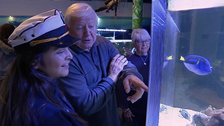 Inside California Education: Cabrillo High School Aquarium – Diving into Marine Science