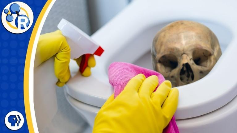 Reactions: Death By Toilet Bowl Cleaning?