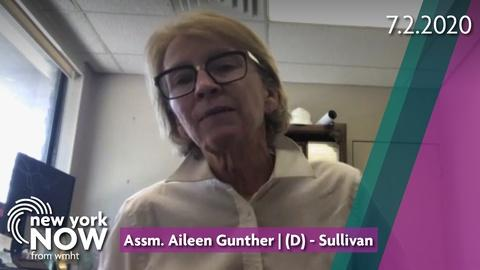 Assemblywoman Aileen Gunther on the State of Mental Health