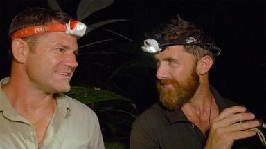 The Jungle at Night