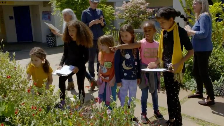 Nature: Citizen Science Story: The Great Sunflower Project
