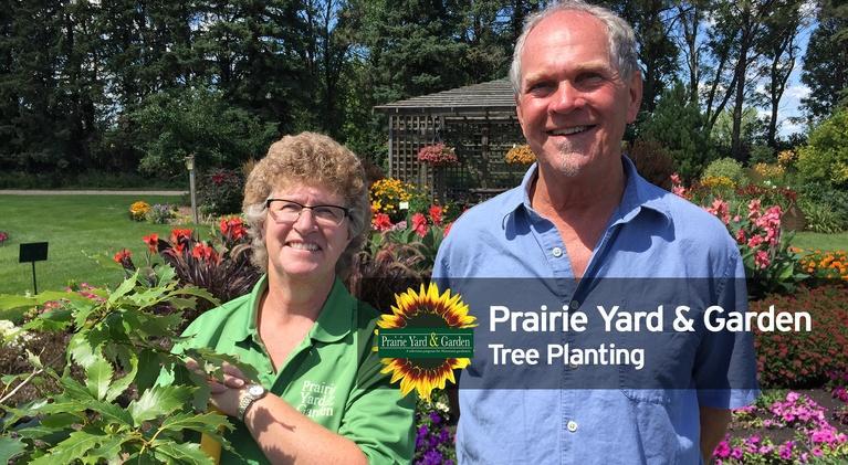 Prairie Yard & Garden: Tree Planting