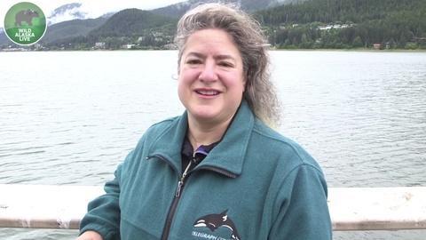 Wild Alaska Live -- Dr. Joy Reidenberg on Orcas