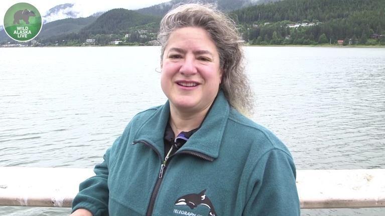 Wild Alaska Live: Dr. Joy Reidenberg on Orcas