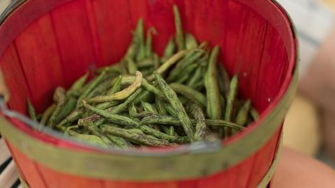 A Chef's Life -- Rattlesnake Beans