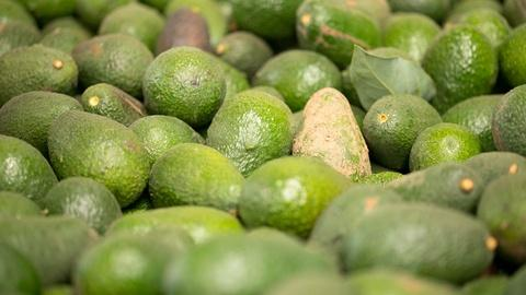 Earth Focus -- Avocado Wars: The Battle Over Water Rights In Chile