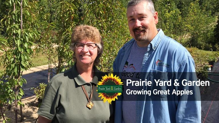 Prairie Yard & Garden: Growing Great Apples