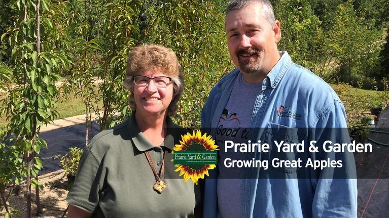 Prairie Yard & Garden: Growing Great Apples