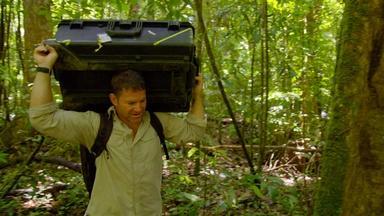 The Team's Brutal, Unexpected Jungle Trek | Digital Extra