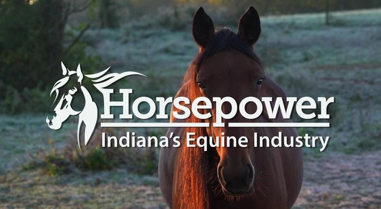 WTIU Documentaries: Horsepower: Indiana's Equine Industry (Director's Cut)