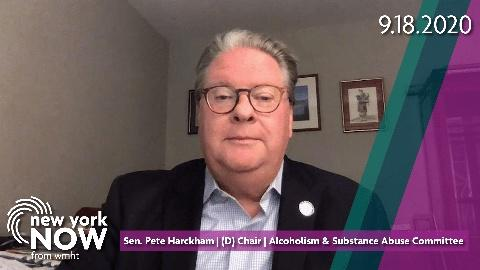 Senate Alcoholism and Substance Abuse Chair Pete Harckham