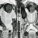Early Astronauts | Journey to the Moon