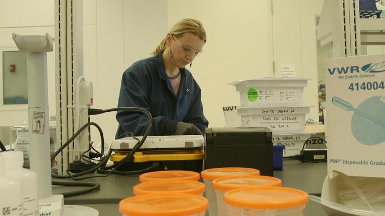 SCI NC: This is where your flu vaccine is made