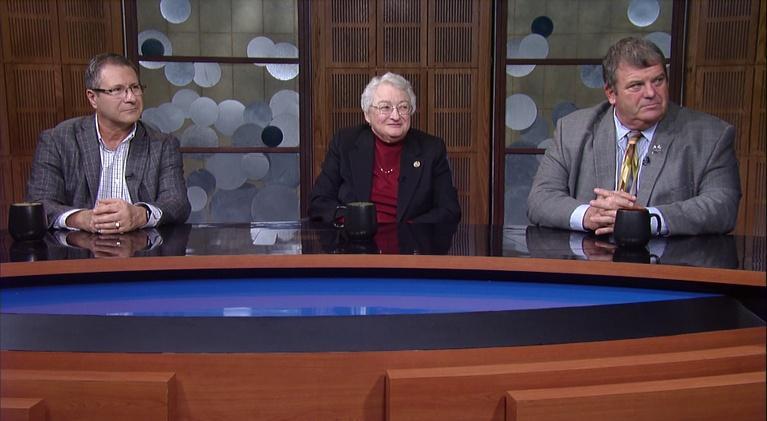 Politically Speaking: 2020 Indiana Senate Legislative Preview