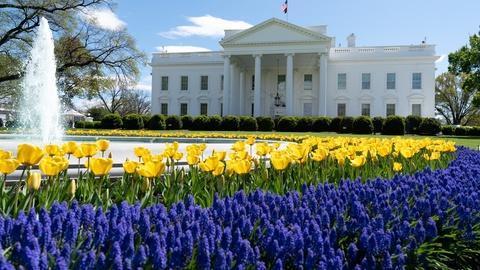 Washington Week -- Washington Week Extra for May 1, 2020