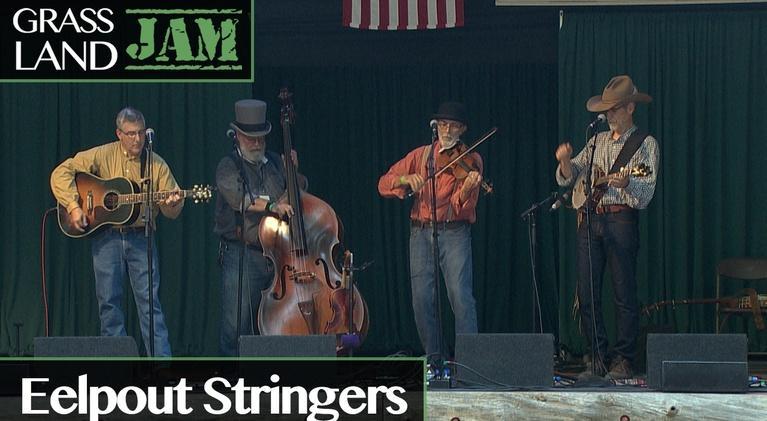 Grassland Jam: The Eelpout Stringers