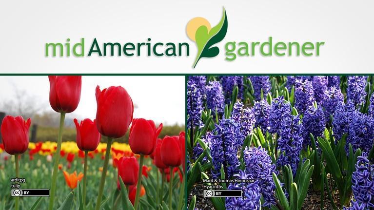 Mid-American Gardener: Mid-American Gardener with Jen Nelson, April 26, 2018