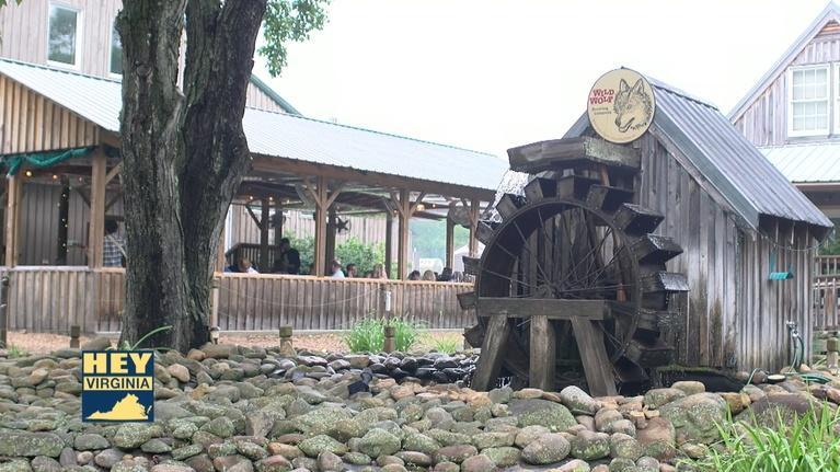 Hey Virginia: Wild Wolf Brewery