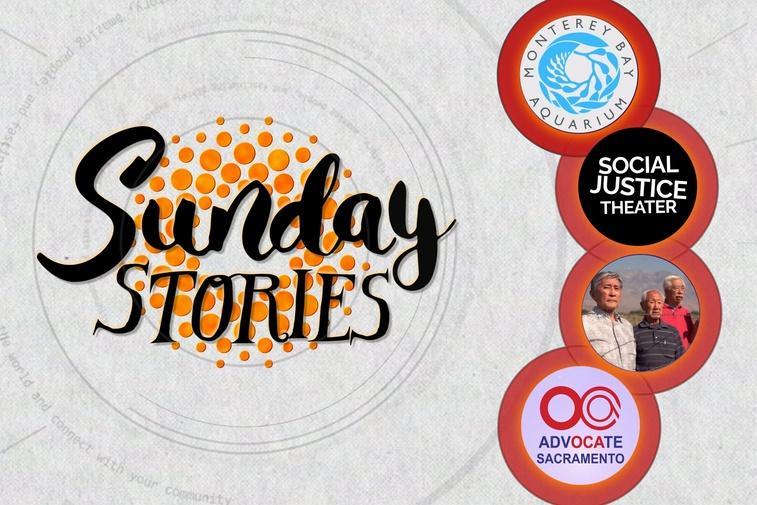 Sunday Stories: Episode 20 Thumbnail