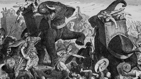 Secrets of the Dead -- How Hannibal's Elephants Crossed the Alps