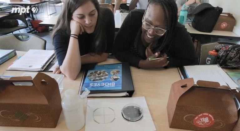 MPT Digital Studios: The Dig: Zebrafish in the Classroom