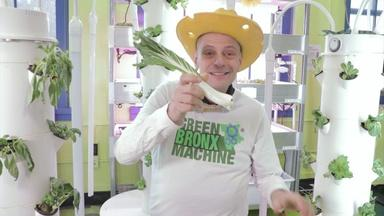 MISTER RITZ GROWS FOOD ALL YEAR - English Captions