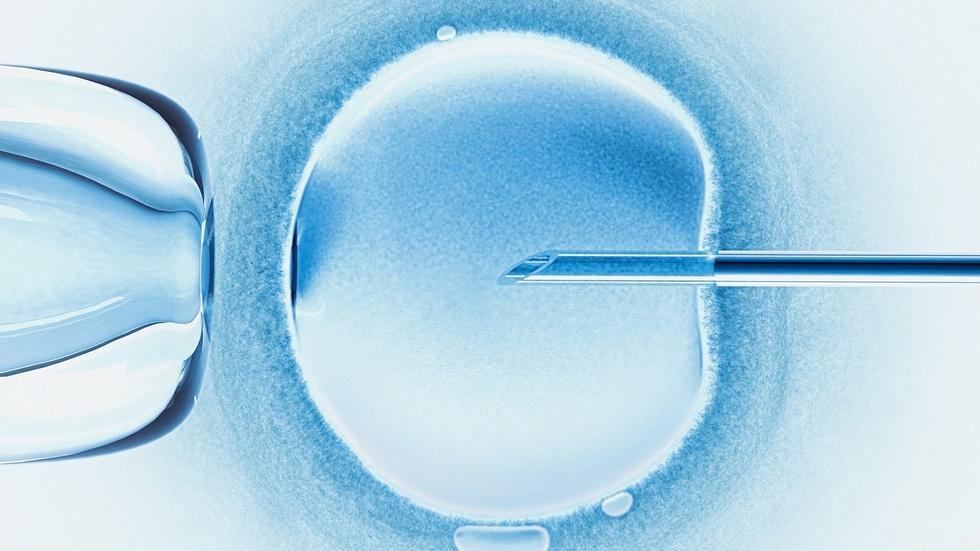Pressure for IVF success obscures ethical issues image