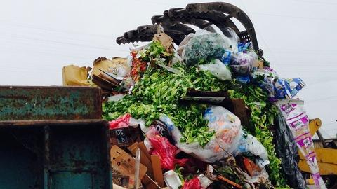 How Denver is tackling food waste to fight hunger, emissions