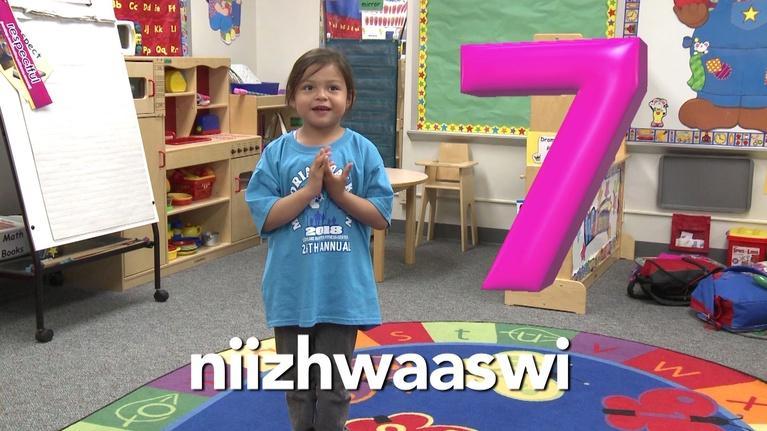 Ojibwemotaadidaa!: Counting to 20