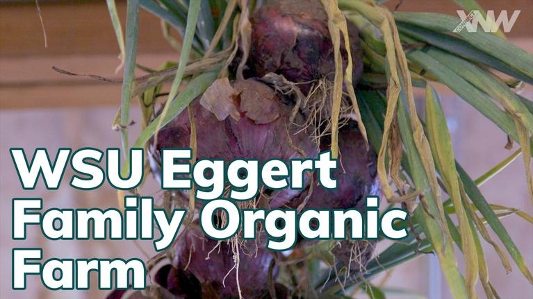 xConnect Northwest: Learn How An Organic Farm Operates