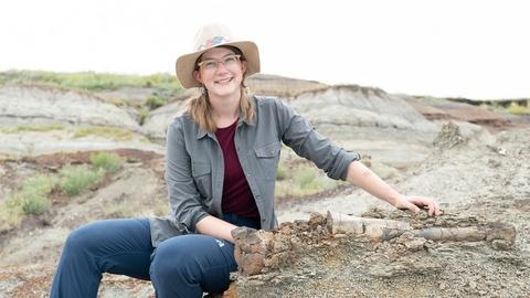 Prehistoric Road Trip -- We Dig Dinosaurs