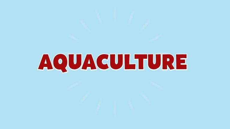 Valley's Gold Education through Agriculture: Valley's Gold Education through Agriculture: Aquaculture