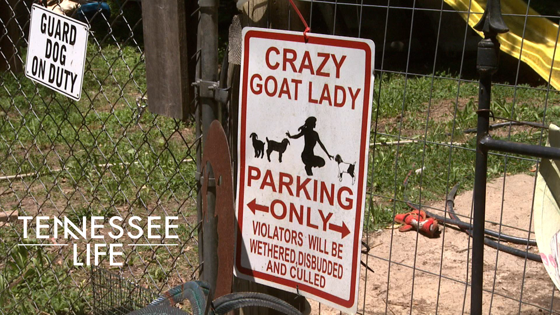 Tennessee Life - 604 - Get Your Goat!