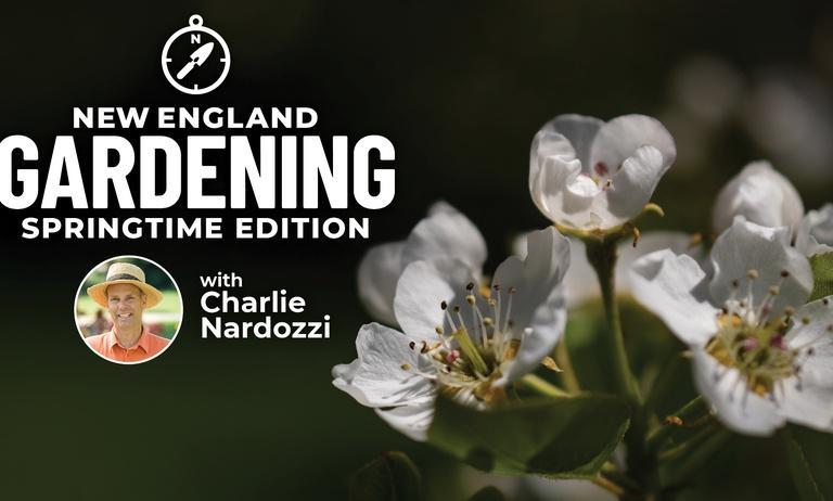 New England Gardening w. Charlie Nardozzi Springtime Edition