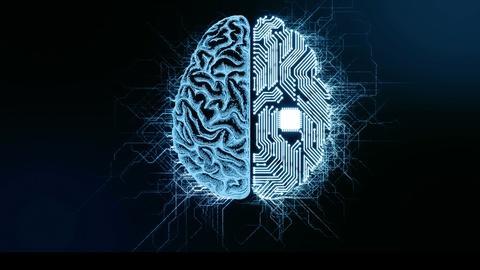 NOVA -- NOVA Wonders Can We Build a Brain?