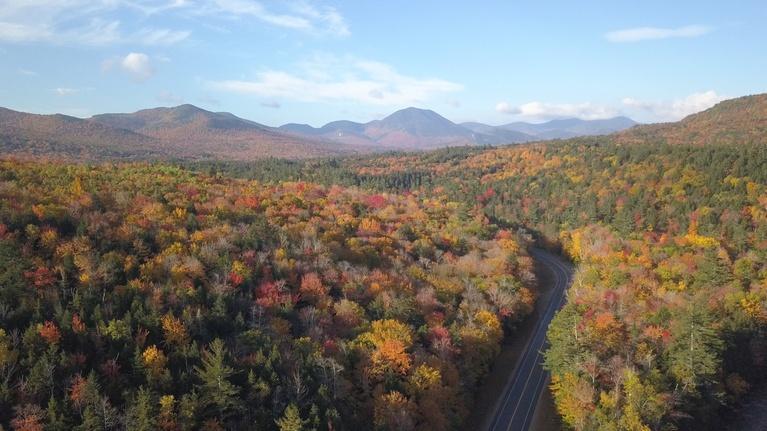 Windows to the Wild: White Mountain National Forest - Wild Moments