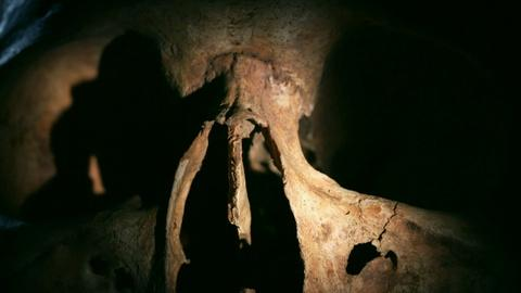NOVA -- Why Did These Vikings' Bones Appear Older Than They Are?