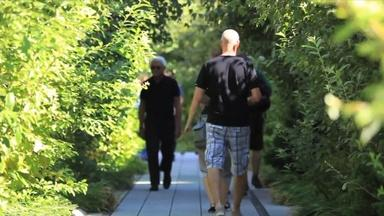 Rails-to-Trails: An Ode to the High Line