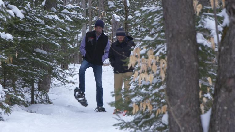 Northbound and Around: Snowshoeing