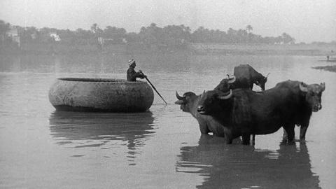 Letters from Baghdad -- Gertrude Bell Muses About the River Tigris