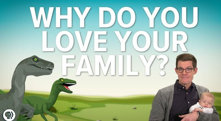 It's Okay to Be Smart: Why Do You Love Your Family?