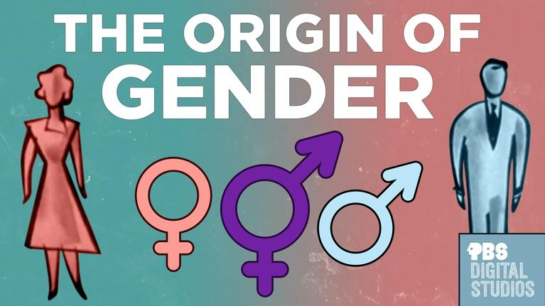 Origin of Everything: The Origin of Gender