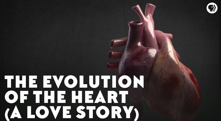 Eons: The Evolution of the Heart (A Love Story)