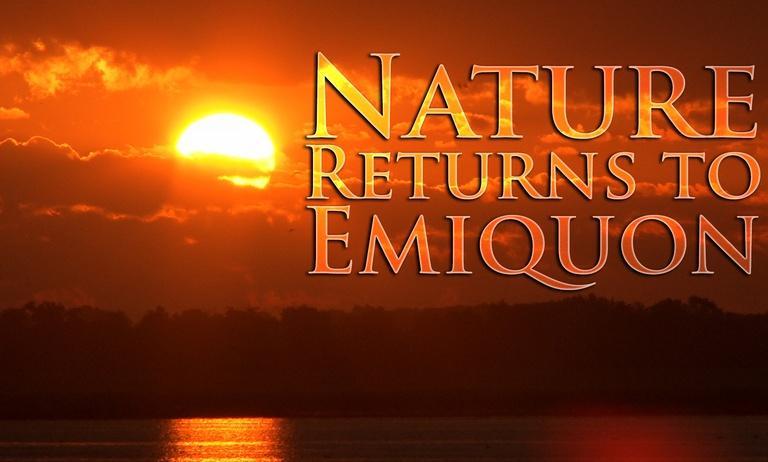 Nature Returns to Emiquon
