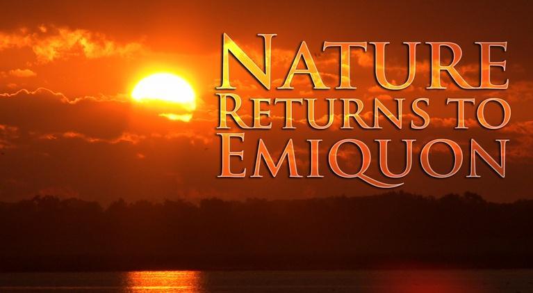 Nature Returns to Emiquon: Nature Returns to Emiquon