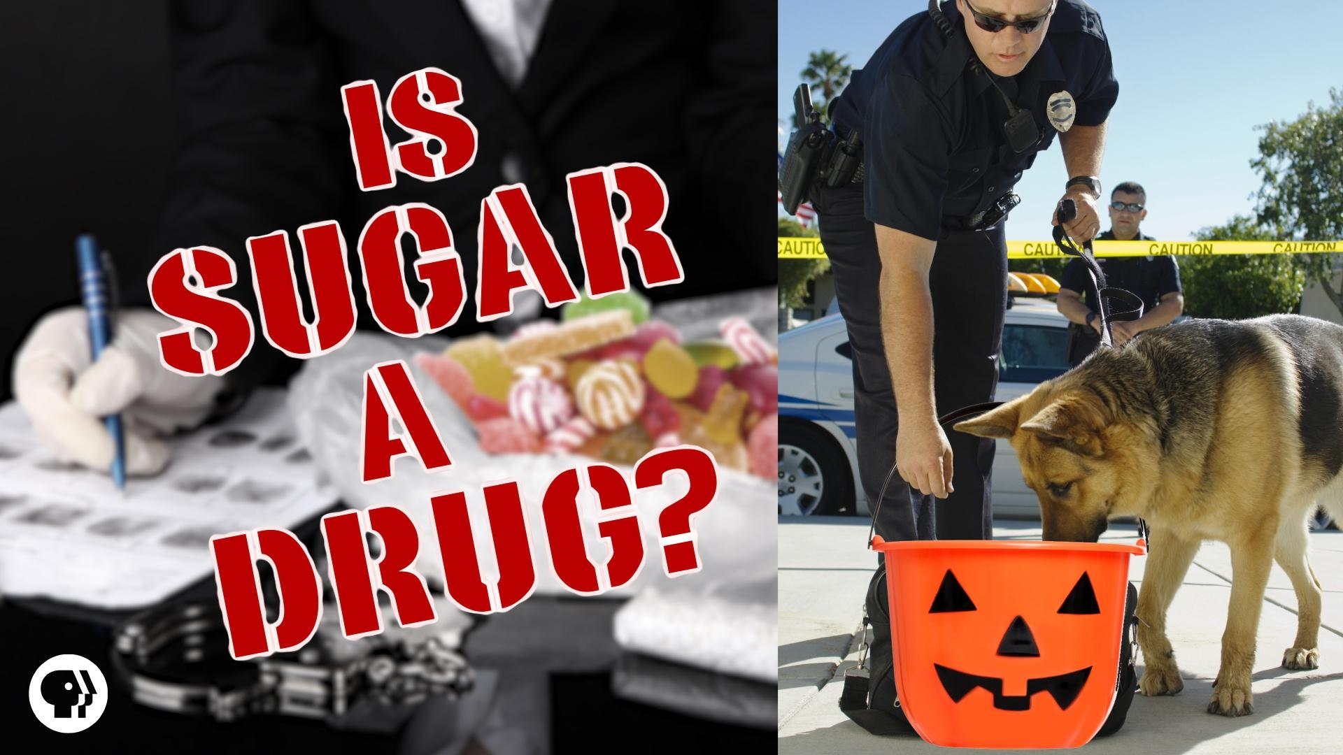 is tv a drug Sugar is a drug it's unfortunately it does seem a little extreme to label a food as a drug but wwwbodyecologycom/articles & wwwfoodmatterstv.