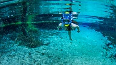 Gaining Vision Underwater